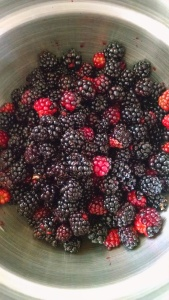 Foraged Blackberries